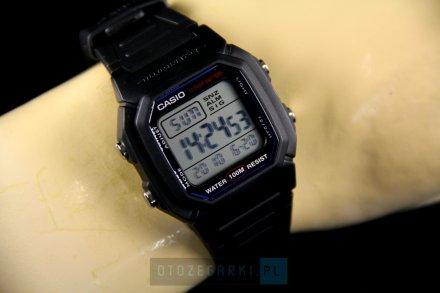 Zegarek Casio W-800H-1AVEF Casio Sport W-800H -1AVEF