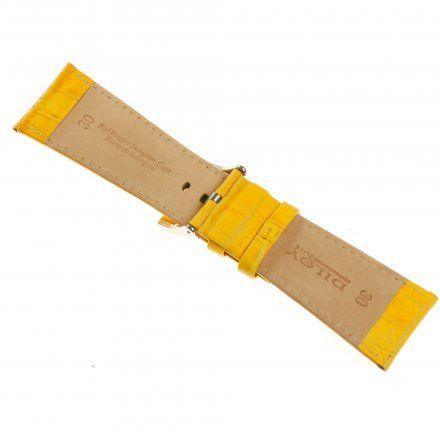 Pasek DILOY Superior 368EA.28.10 Skórzany Żółty 28 mm - GRATIS dwa teleskopy i narzędzie