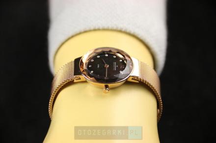 Skagen 456SRR1 Zegarek Damski Skandynawskiej Marki