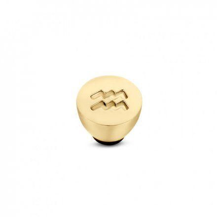 Element wymienny Meddy Melano Twisted TM50 Stal Złoty Znak Zodiaku Wodnik
