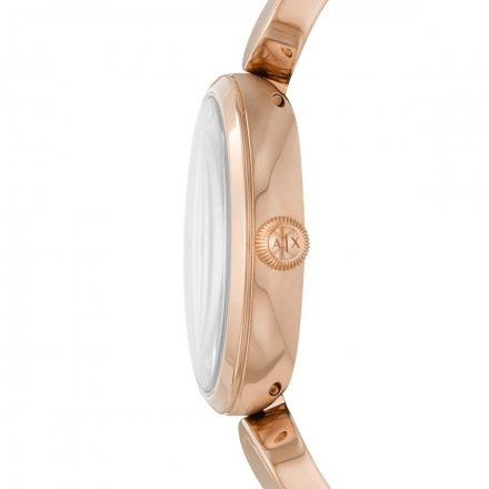AX5379 Armani Exchange Brooke zegarek damski AX z bransoletą