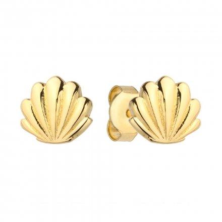 Biżuteria SAXO Kolczyki Złote Muszelki Pełne 7-4-K00305-0.90