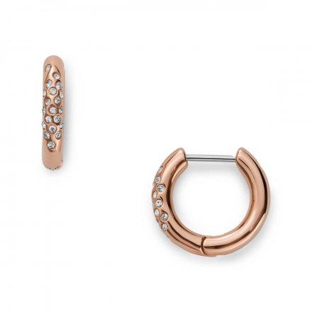 Biżuteria Skagen - Kolczyki SKJ1478791